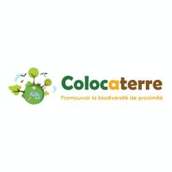 Colocaterre